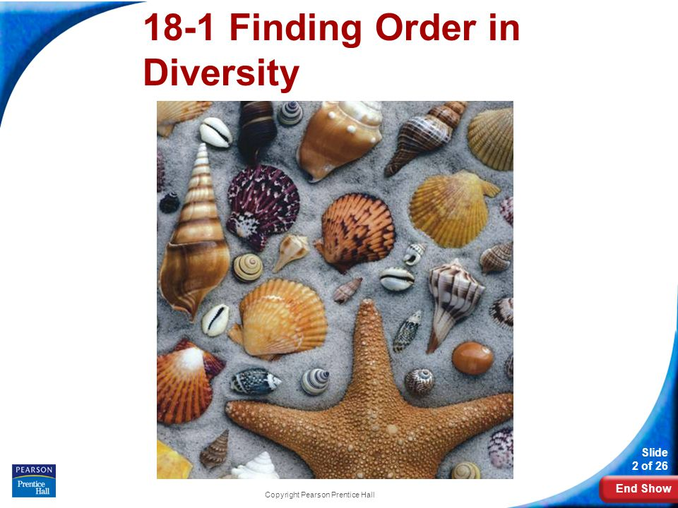 End Show Slide 2 of 26 Copyright Pearson Prentice Hall 18-1 Finding Order in Diversity