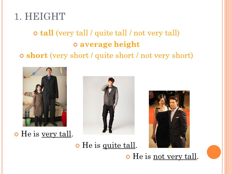1. HEIGHT tall (very tall / quite tall / not very tall) average height short (very short / quite short / not very short) He is very tall. He is quite