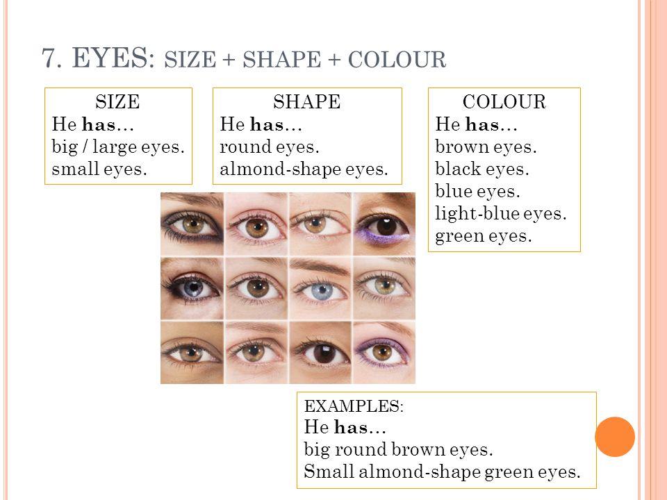 7. EYES: SIZE + SHAPE + COLOUR SIZE He has … big / large eyes. small eyes. COLOUR He has … brown eyes. black eyes. blue eyes. light-blue eyes. green e