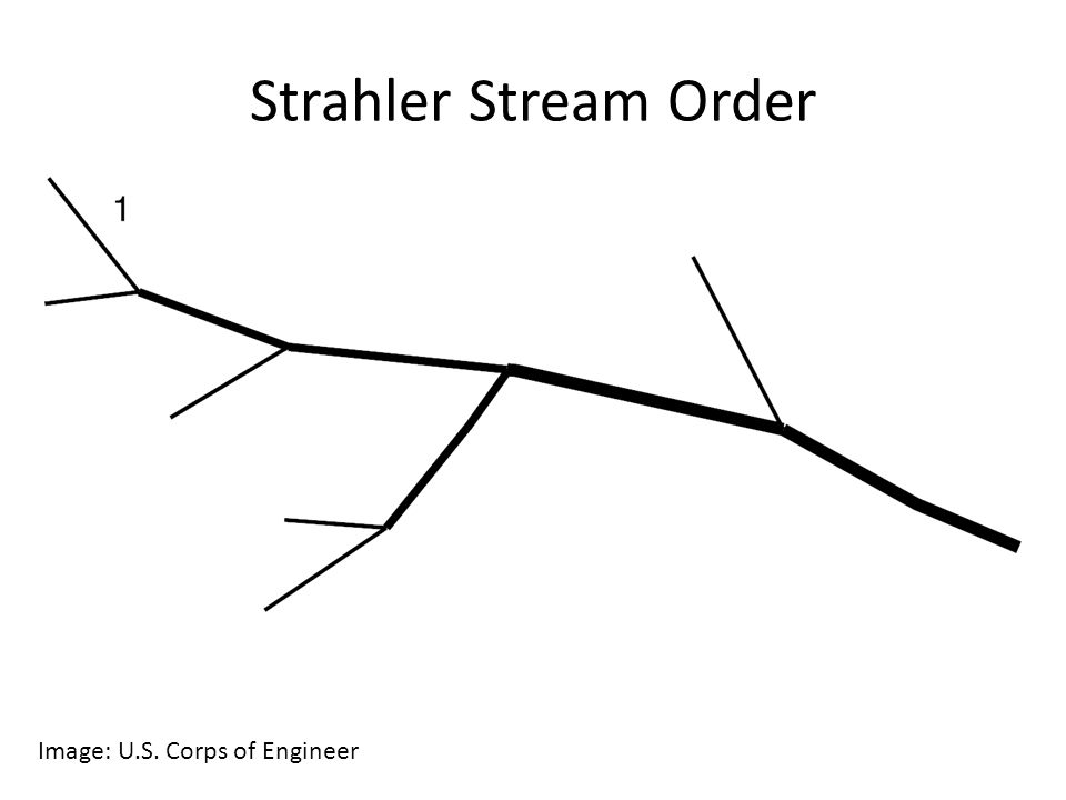 Indicate the order of streams by writing 1, 2, 3, 4, or 5.