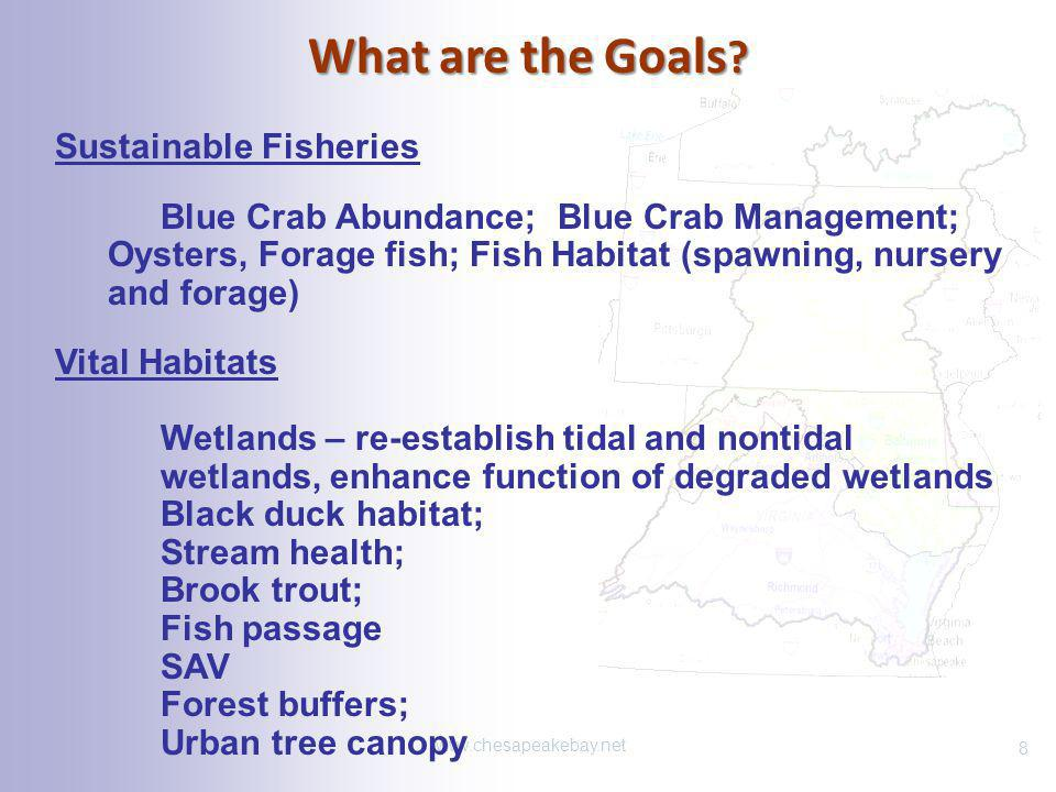 What are the Goals ? www.chesapeakebay.net Sustainable Fisheries Blue Crab Abundance; Blue Crab Management; Oysters, Forage fish; Fish Habitat (spawni