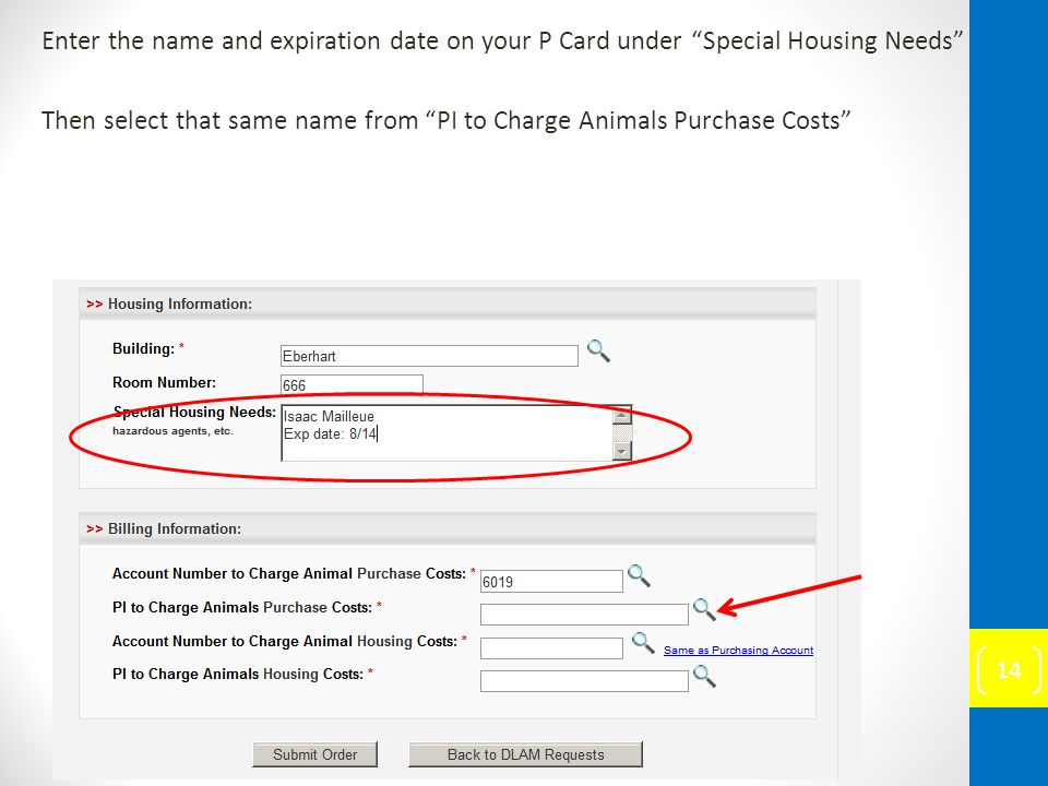 Enter the name and expiration date on your P Card under Special Housing Needs Then select that same name from PI to Charge Animals Purchase Costs 14