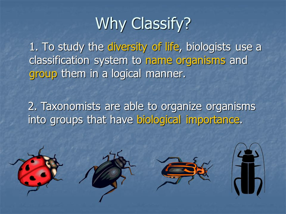 Why Classify? 1. To study the diversity of life, biologists use a classification system to name organisms and group them in a logical manner. 2. Taxon