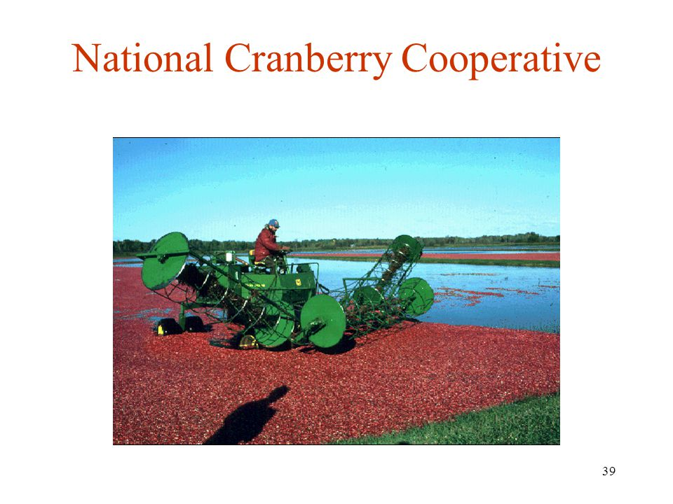 39 National Cranberry Cooperative