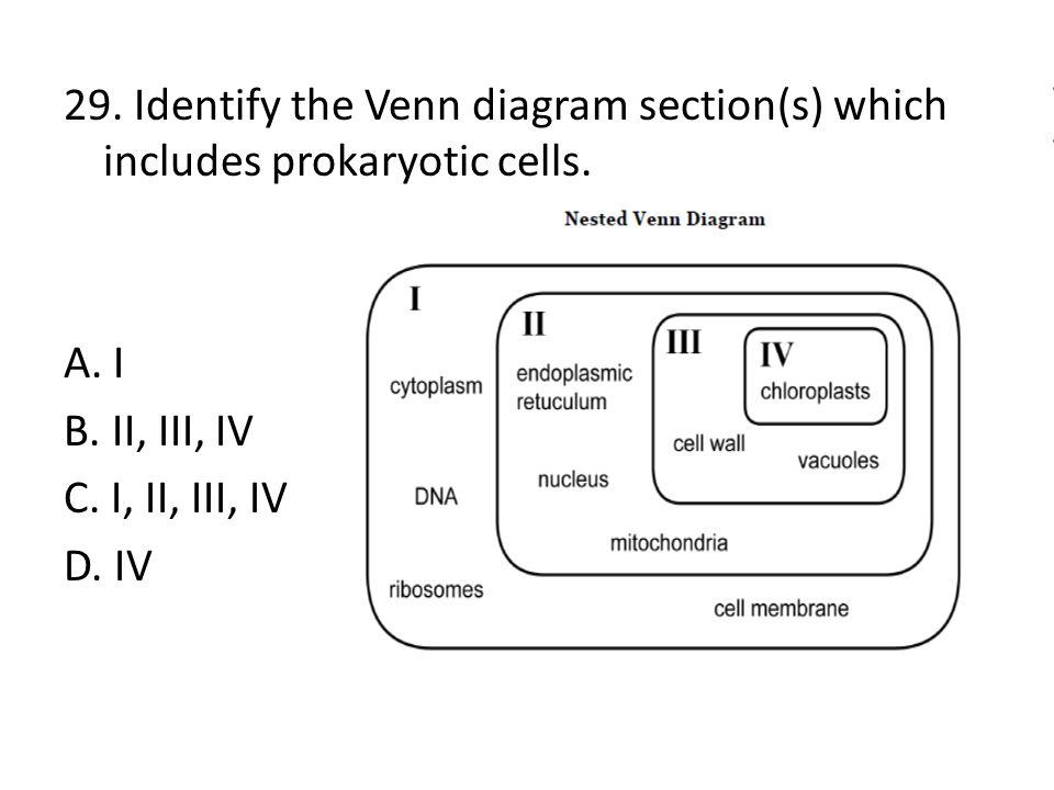 29. Identify the Venn diagram section(s) which includes prokaryotic cells. A. I B. II, III, IV C. I, II, III, IV D. IV