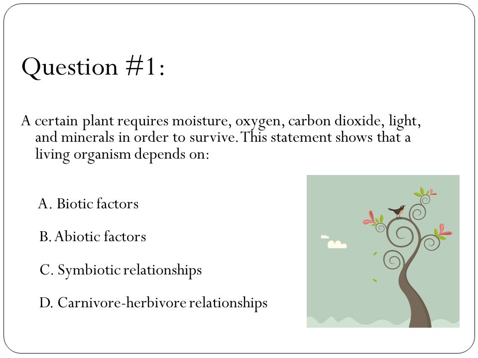 Question #19: Rainfall in a tropical region is below average for 10 consecutive years.