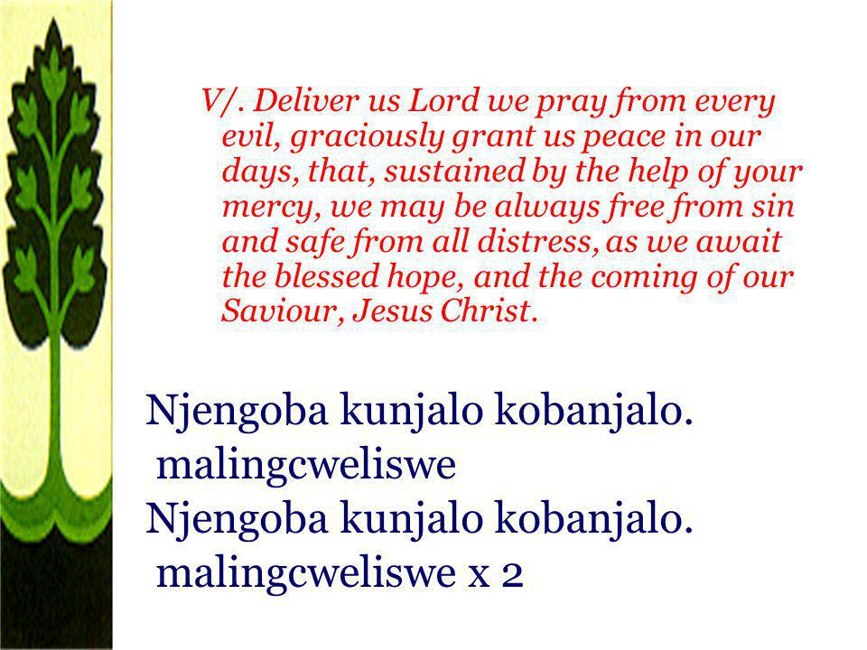 V/. Deliver us Lord we pray from every evil, graciously grant us peace in our days, that, sustained by the help of your mercy, we may be always free f