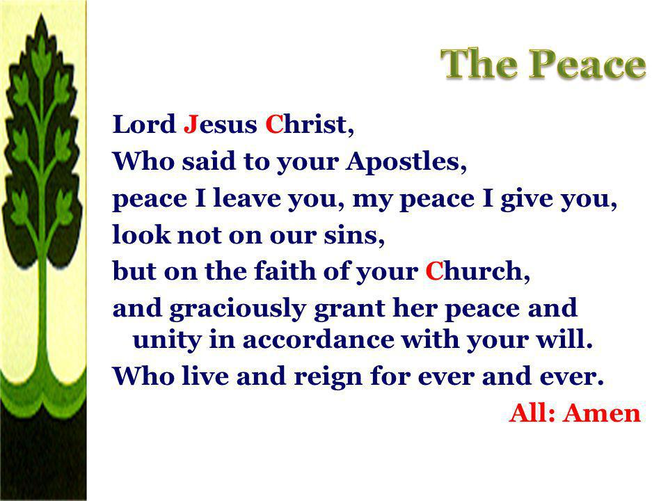 Lord Jesus Christ, Who said to your Apostles, peace I leave you, my peace I give you, look not on our sins, but on the faith of your Church, and graci