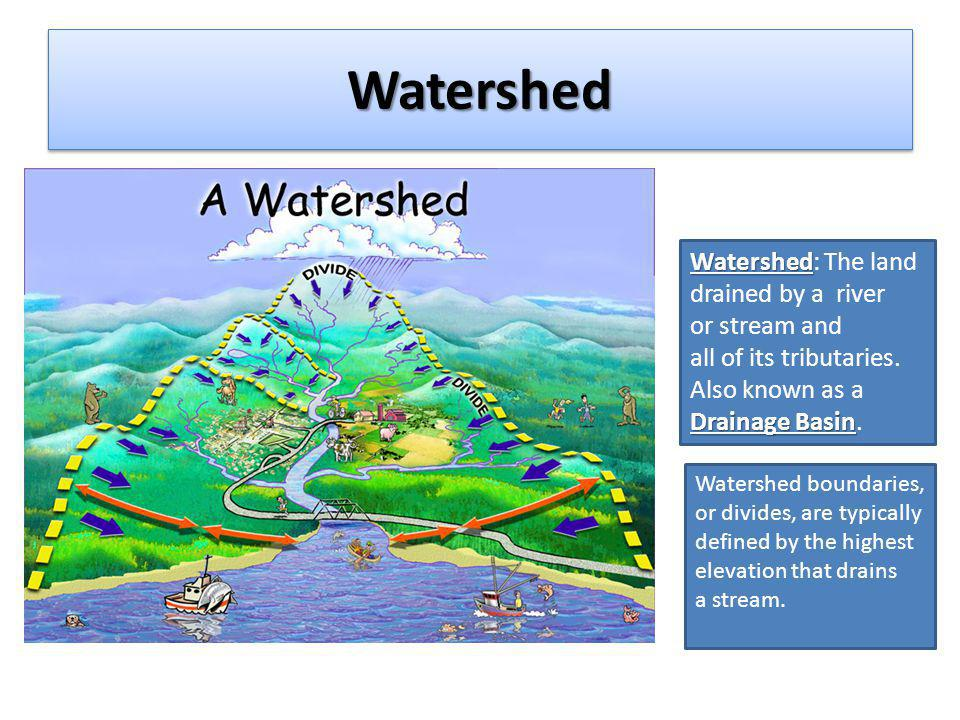 Watersheds The rate at which water travels through a watershed is determined by factors such as: its size (total surface area) topography (flat or steep) amount and type of vegetation human development The rate at which water travels through a watershed is determined by factors such as: its size (total surface area) topography (flat or steep) amount and type of vegetation human development The total amount of water that collects in a river that drains the watershed is called Discharge its Discharge.