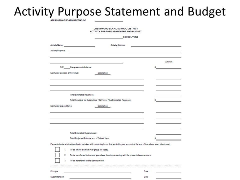 Activity Purpose Statement and Budget
