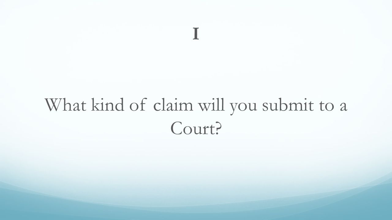 I What kind of claim will you submit to a Court?