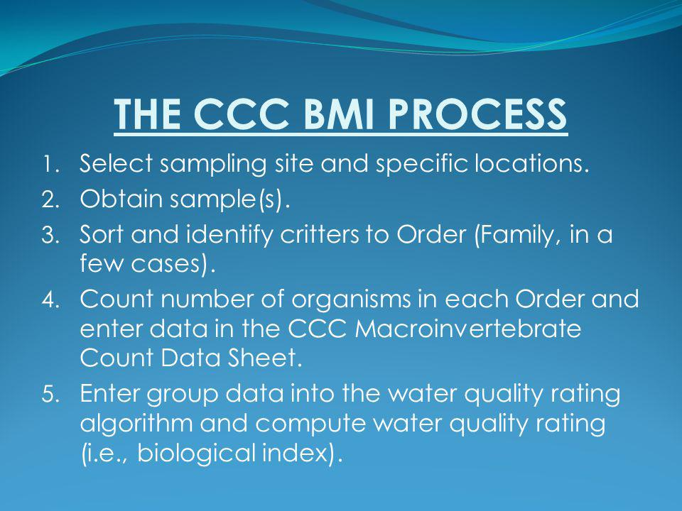 THE CCC BMI PROCESS 1. Select sampling site and specific locations. 2. Obtain sample(s). 3. Sort and identify critters to Order (Family, in a few case
