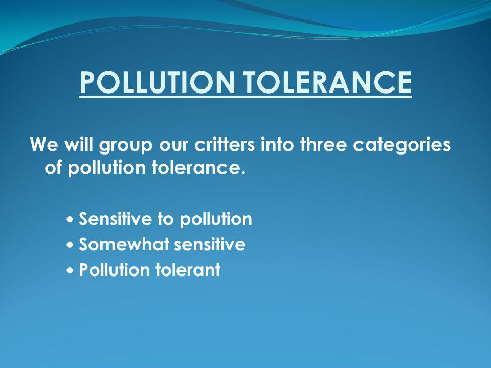 POLLUTION TOLERANCE We will group our critters into three categories of pollution tolerance.