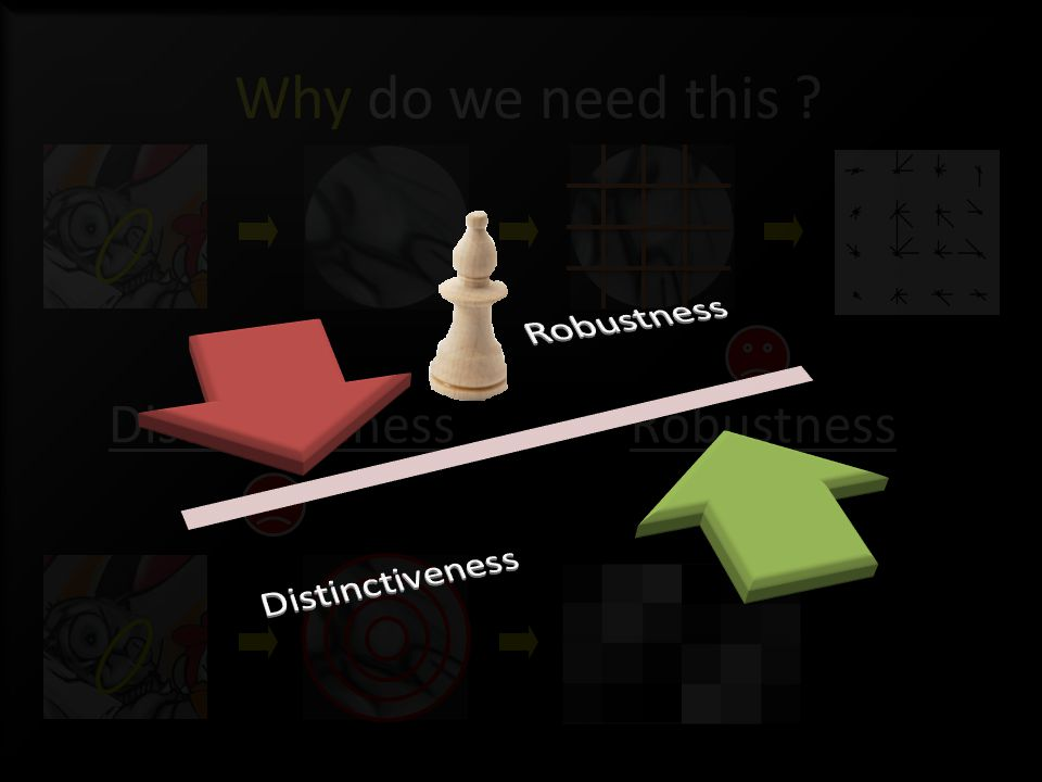 Why do we need this RobustnessDistinctiveness