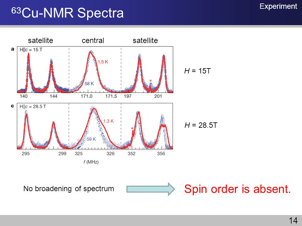 No broadening of spectrum Spin order is absent. 63 Cu-NMR Spectra Experiment central satellite H = 15T H = 28.5T 14
