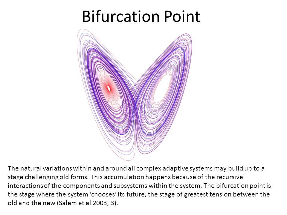 Bifurcation Point The natural variations within and around all complex adaptive systems may build up to a stage challenging old forms.