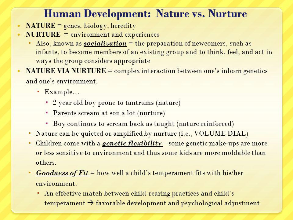 Nature Nurture Essay