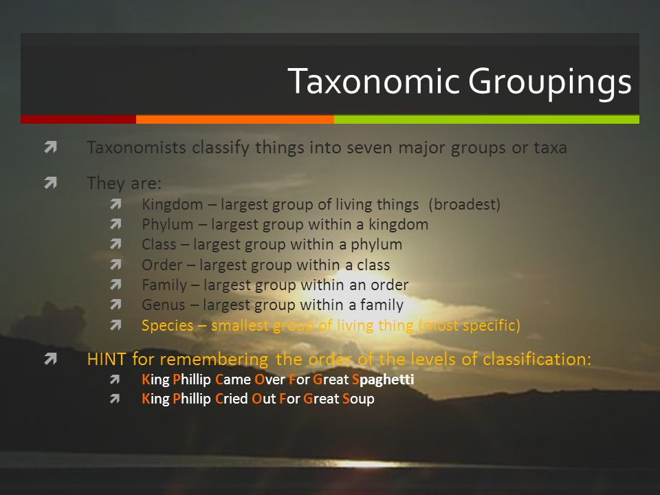 Taxonomic Groupings Taxonomists classify things into seven major groups or taxa They are: Kingdom – largest group of living things (broadest) Phylum –