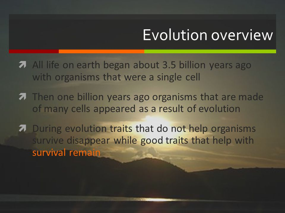 Evolution overview All life on earth began about 3.5 billion years ago with organisms that were a single cell Then one billion years ago organisms tha