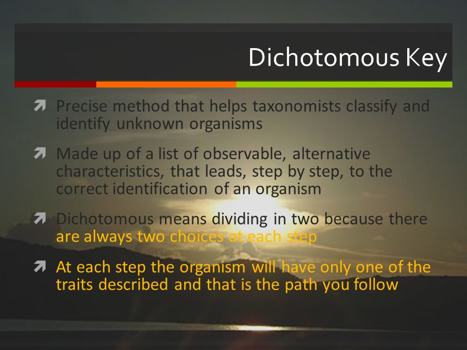 Dichotomous Key Precise method that helps taxonomists classify and identify unknown organisms Made up of a list of observable, alternative characteris