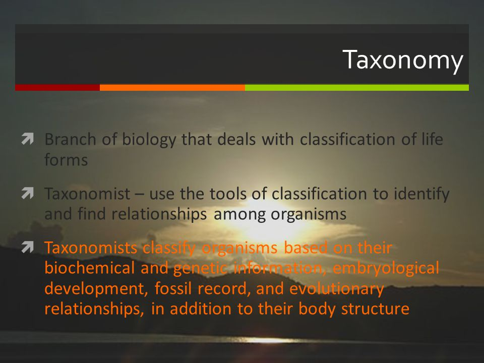 Taxonomy Branch of biology that deals with classification of life forms Taxonomist – use the tools of classification to identify and find relationship