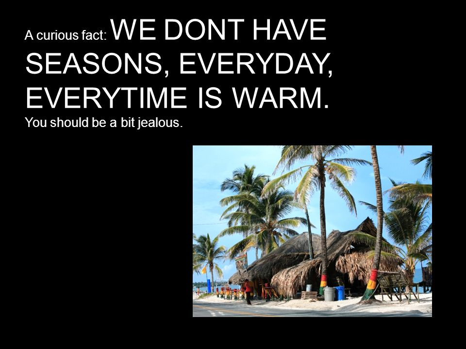 A curious fact: WE DONT HAVE SEASONS, EVERYDAY, EVERYTIME IS WARM. You should be a bit jealous.
