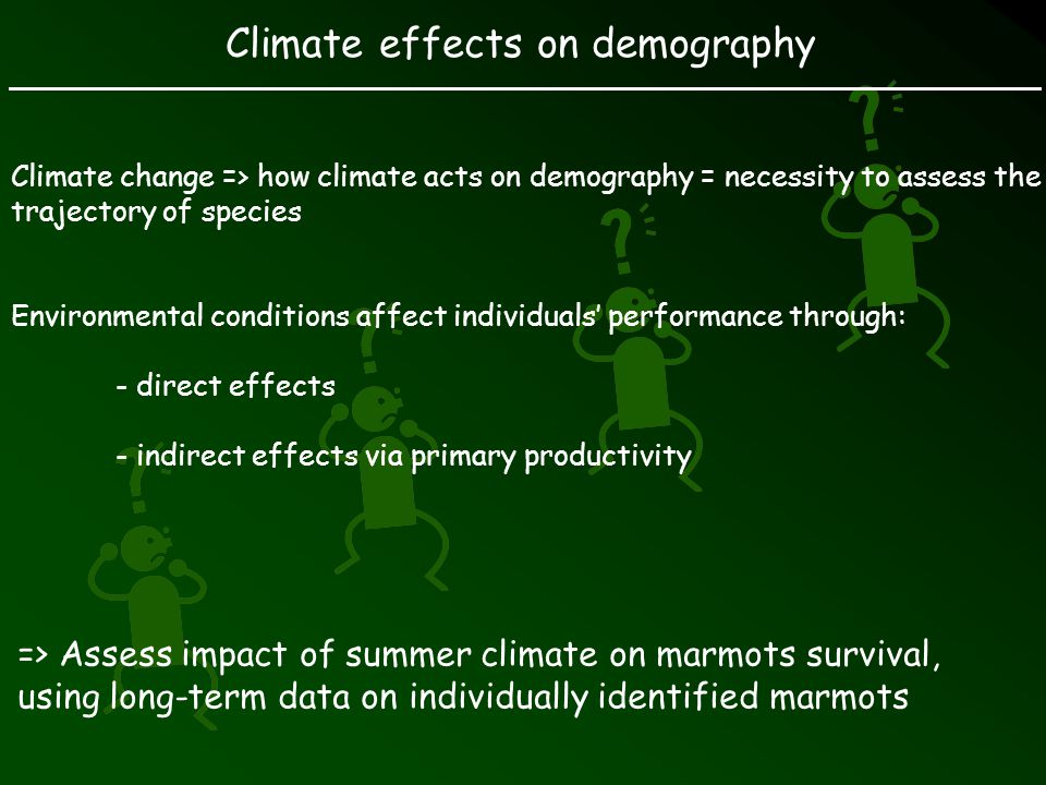 Climate effects on demography Climate change => how climate acts on demography = necessity to assess the trajectory of species Environmental conditions affect individuals performance through: - direct effects - indirect effects via primary productivity => Assess impact of summer climate on marmots survival, using long-term data on individually identified marmots