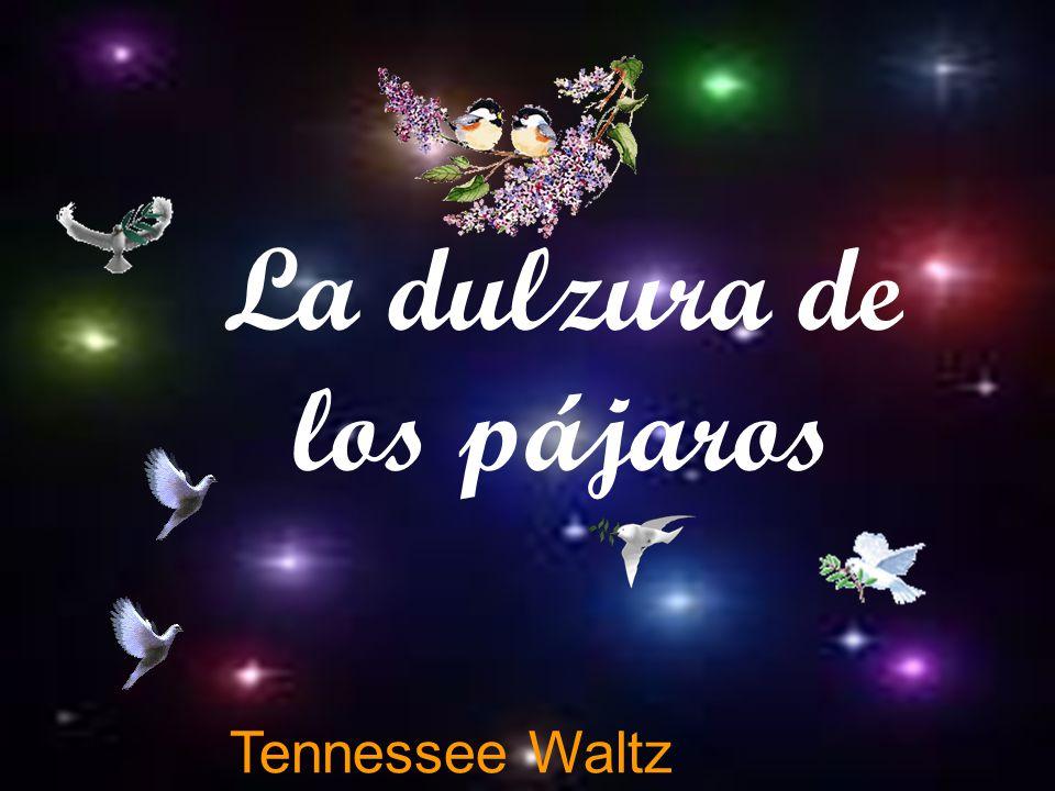 Tennessee Waltz La dulzura de los pájaros