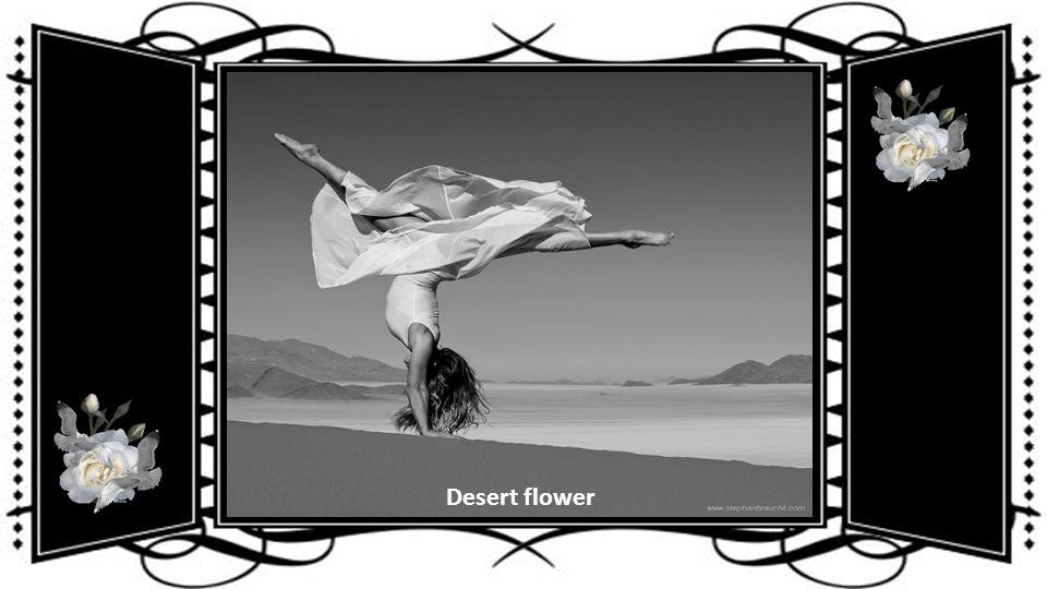 Ballet Dance Duo