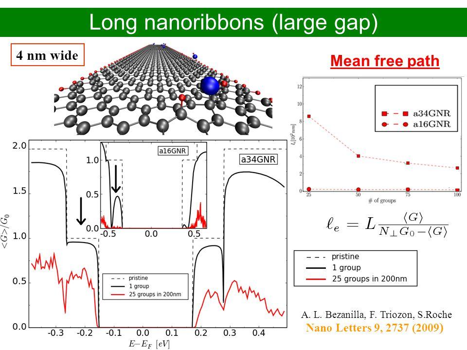 Alejandro López Bezanilla – CEA-Grenoble/INAC PhD defense - November 2009 Long nanoribbons (large gap) Mean free path 4 nm wide A. L. Bezanilla, F. Tr