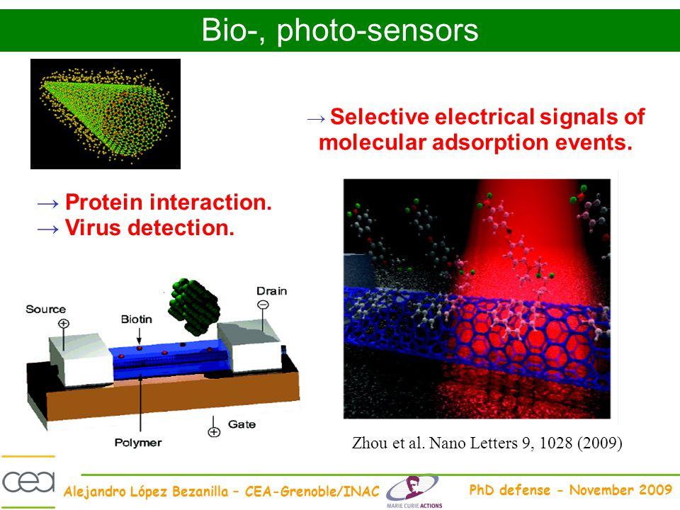 Alejandro López Bezanilla – CEA-Grenoble/INAC PhD defense - November 2009 Selective electrical signals of molecular adsorption events. Protein interac