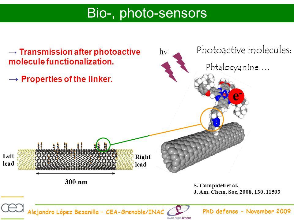 Alejandro López Bezanilla – CEA-Grenoble/INAC PhD defense - November 2009 Left lead Right lead 300 nm Transmission after photoactive molecule function