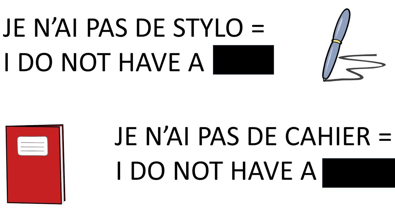 JE NAI PAS DE STYLO = I DO NOT HAVE A PEN JE NAI PAS DE CAHIER = I DO NOT HAVE A BOOK