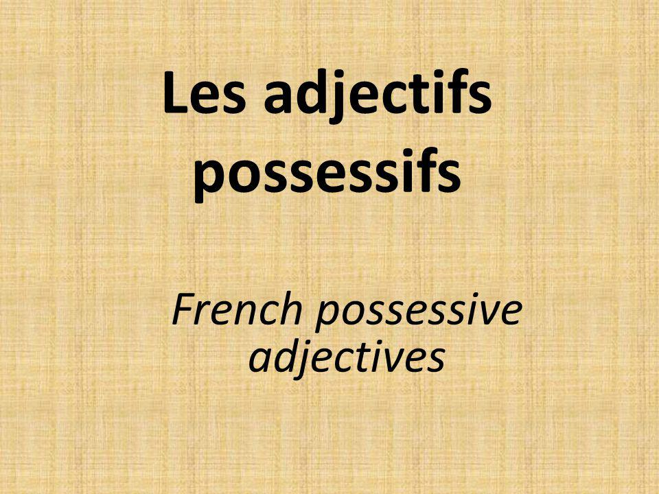 Les adjectifs possessifs French possessive adjectives