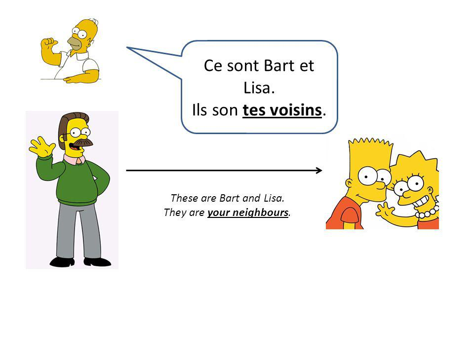 These are Bart and Lisa. They are your neighbours. Ce sont Bart et Lisa. Ils son tes voisins.