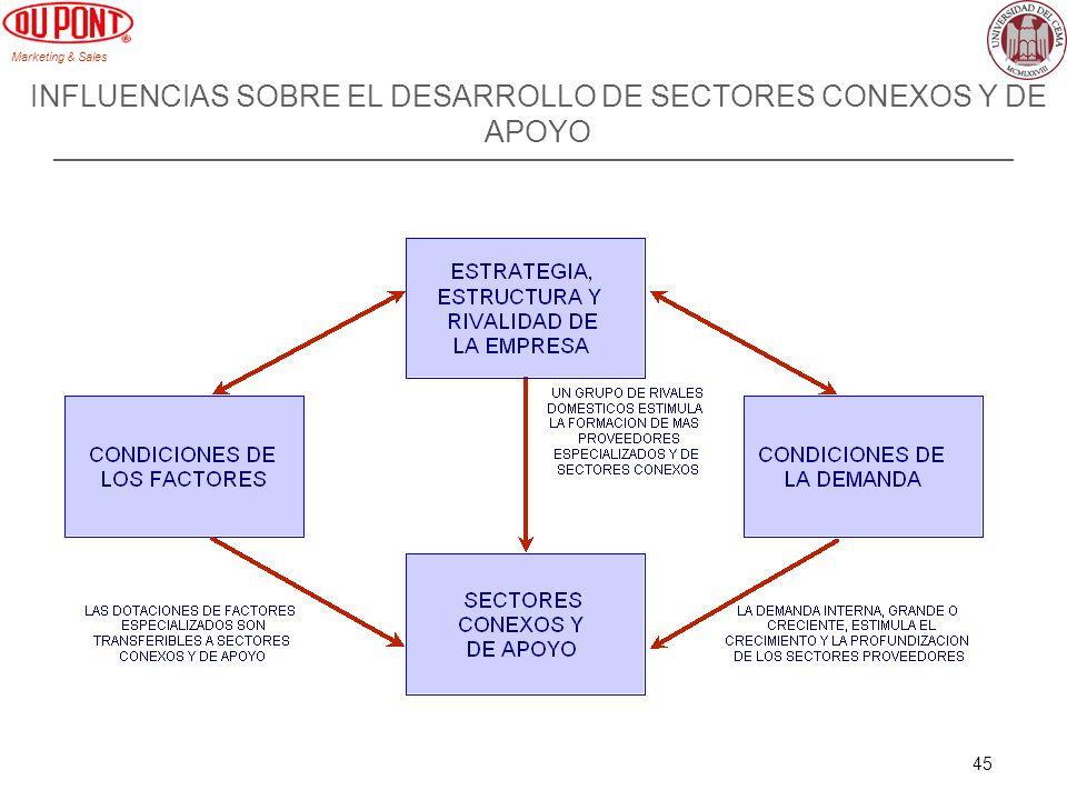 Marketing & Sales 45 INFLUENCIAS SOBRE EL DESARROLLO DE SECTORES CONEXOS Y DE APOYO