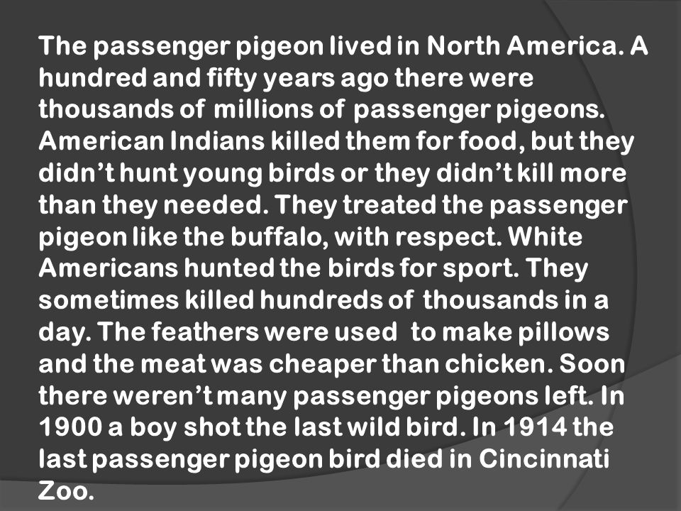 The passenger pigeon lived in North America.