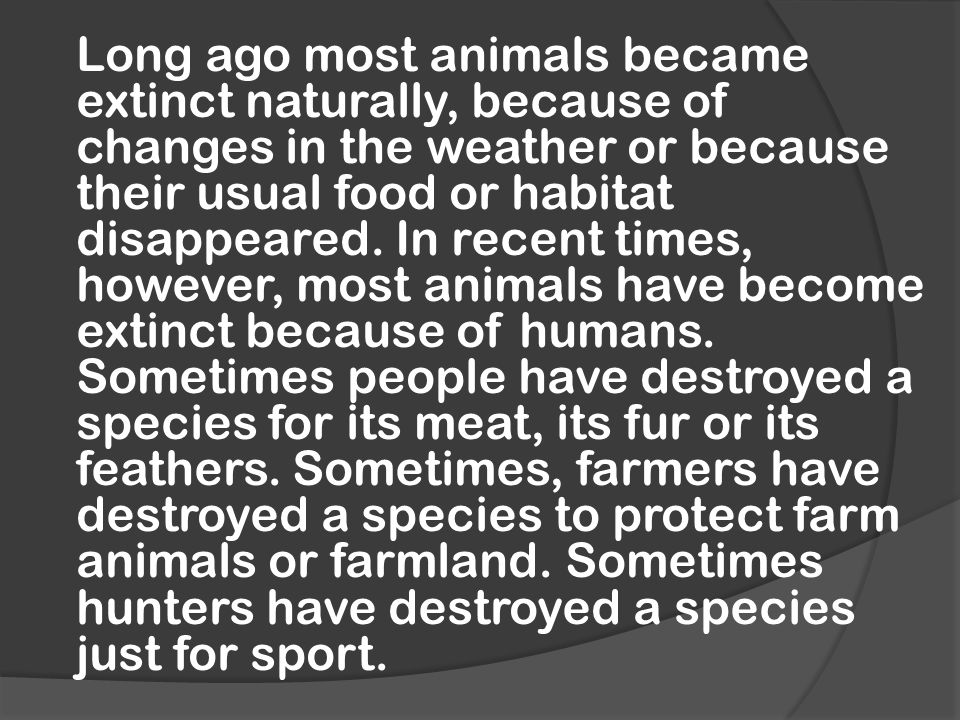 Long ago most animals became extinct naturally, because of changes in the weather or because their usual food or habitat disappeared.
