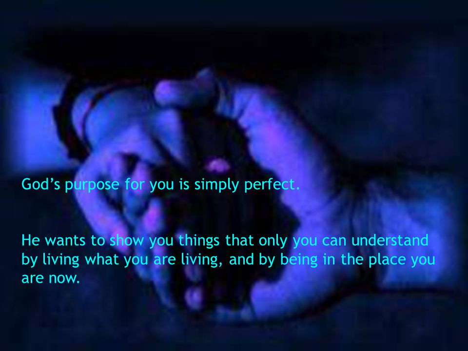 Gods purpose for you is simply perfect.
