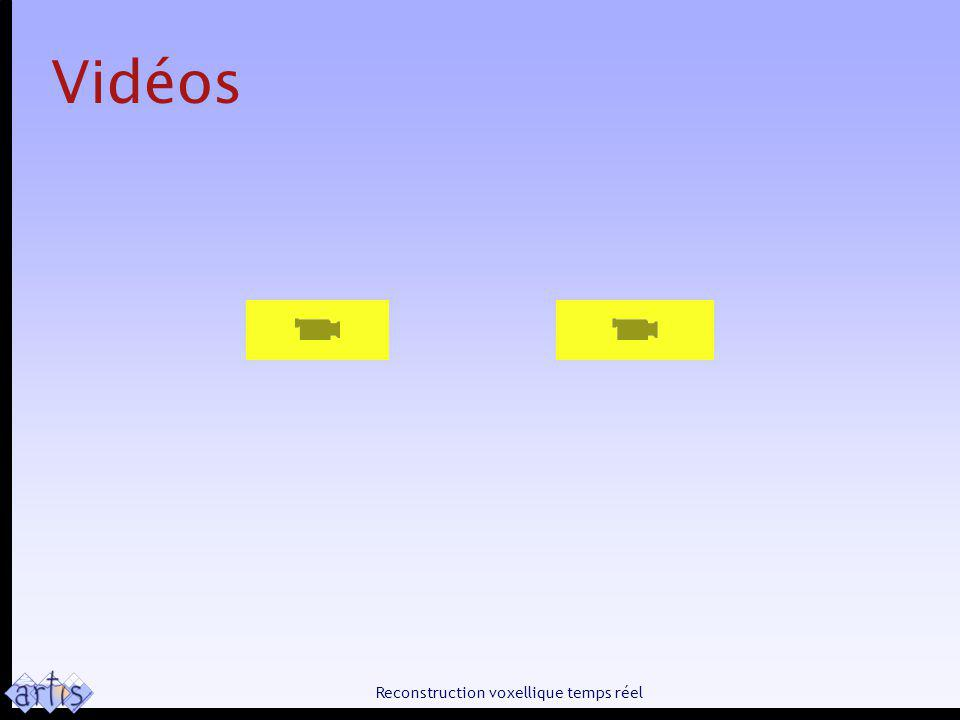 Reconstruction voxellique temps réel Vidéos