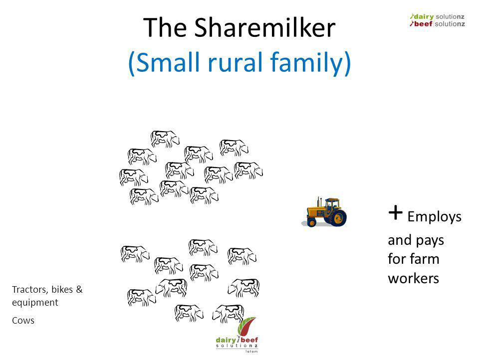 The Sharemilker (Small rural family) Cows Tractors, bikes & equipment + Employs and pays for farm workers