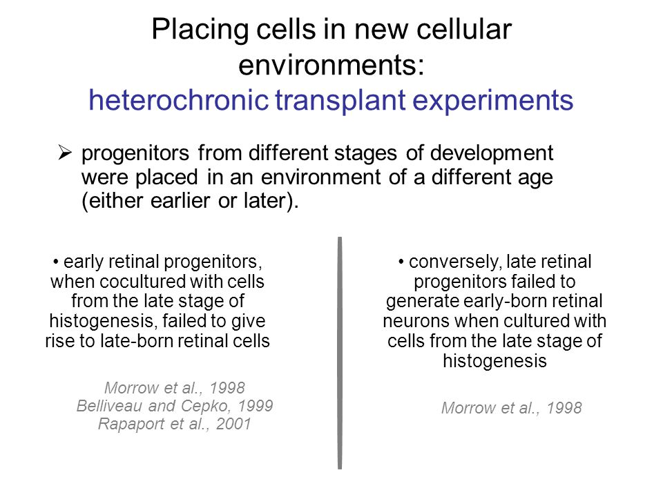 Placing cells in new cellular environments: heterochronic transplant experiments progenitors from different stages of development were placed in an environment of a different age (either earlier or later).
