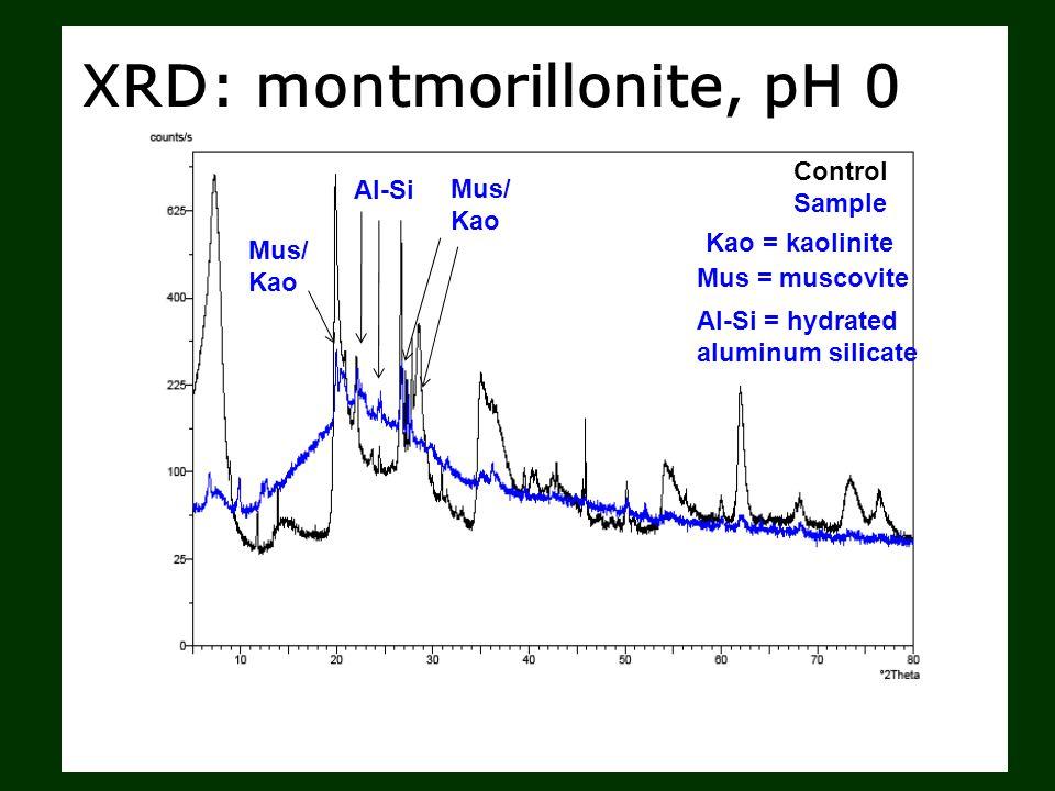 XRD: montmorillonite, pH 0 Control Sample Mus/ Kao Al-Si Mus/ Kao Kao = kaolinite Mus = muscovite Al-Si = hydrated aluminum silicate