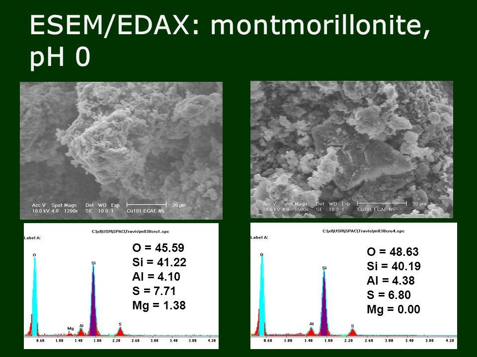 ESEM/EDAX: montmorillonite, pH 0 O = 45.59 Si = 41.22 Al = 4.10 S = 7.71 Mg = 1.38 O = 48.63 Si = 40.19 Al = 4.38 S = 6.80 Mg = 0.00