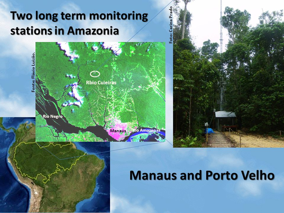 Fonte: Flávio Luizão. Rio Negro Manaus Rio Amazonas Rbio Cuieiras Foto: Carina Prado Two long term monitoring stations in Amazonia Manaus and Porto Ve