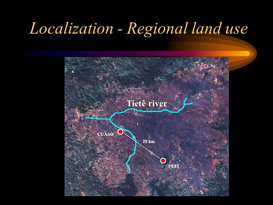 Localization - Regional land use CUASO PEFI 20 km Tietê river