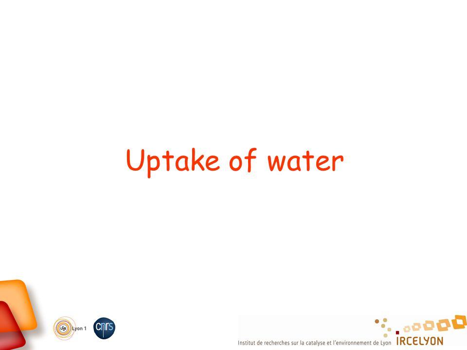 Uptake of water