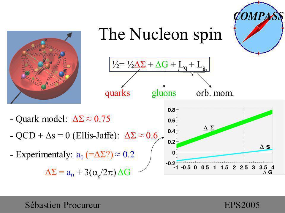 - Quark model: ΔΣ 0.75 - QCD + s = 0 (Ellis-Jaffe): ΔΣ 0.6 - Experimentaly: a 0 (=ΔΣ?) 0.2 The Nucleon spin ½= ½ΔΣ + ΔG + L q + L g quarks gluons orb.