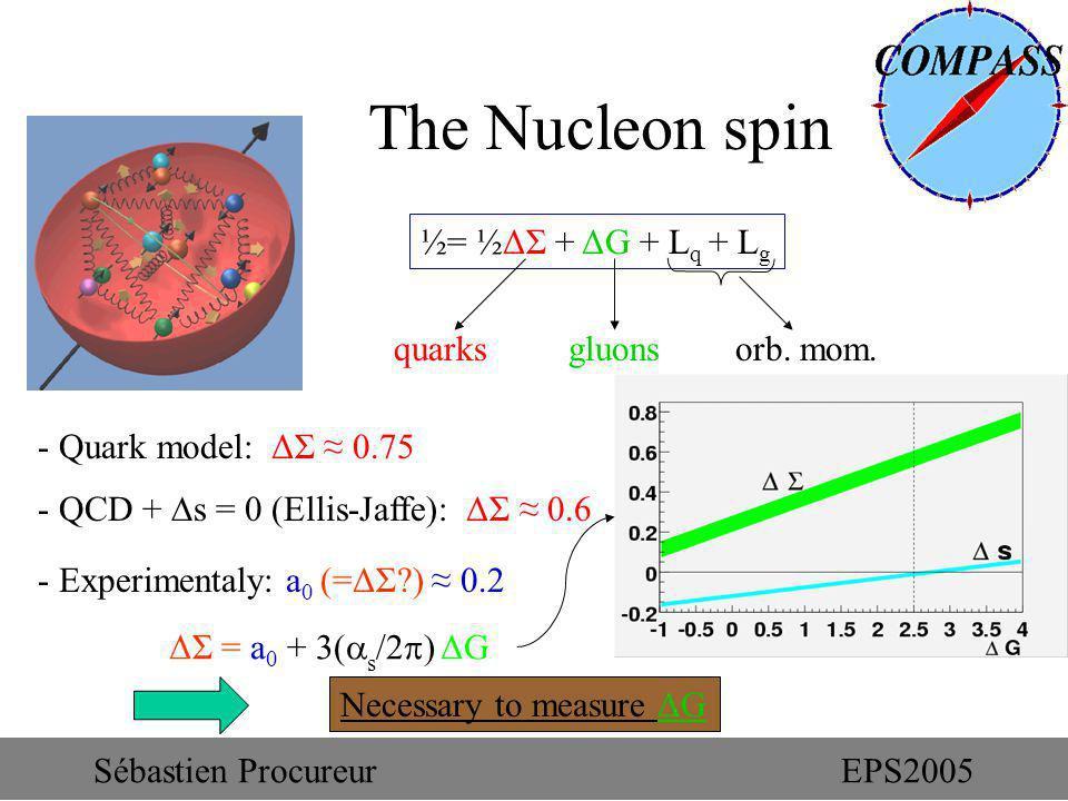 The Nucleon spin ½= ½ΔΣ + ΔG + L q + L g quarks gluons orb. mom. Necessary to measure ΔG - Quark model: ΔΣ 0.75 - QCD + s = 0 (Ellis-Jaffe): ΔΣ 0.6 Sé