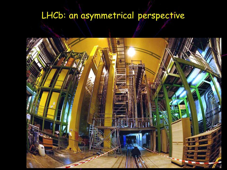 LHCb: an asymmetrical perspective